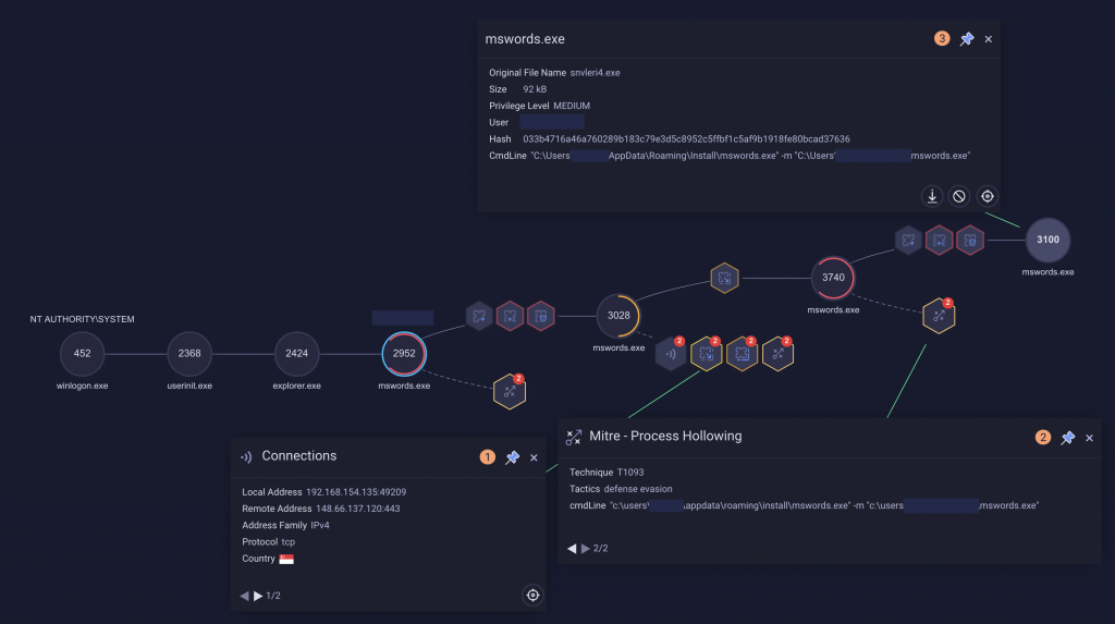Netwire activity